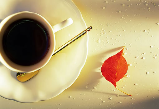 leisure 21 cafea de slăbire)